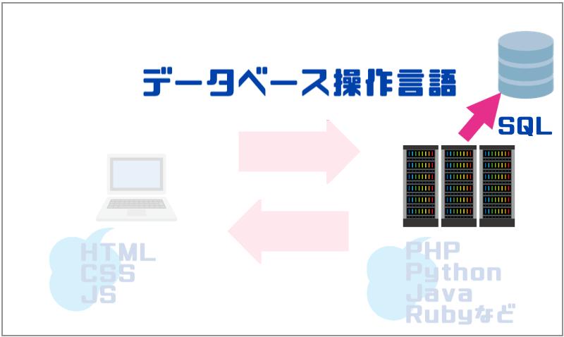 3.データベース操作言語|SQL